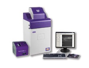 iBox® Small Animal Imaging System